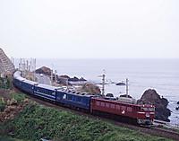 304p006